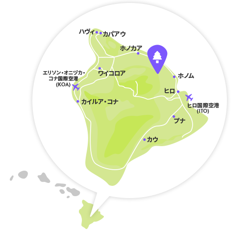 ハワイ島にコアの木1,000 本植えよう!